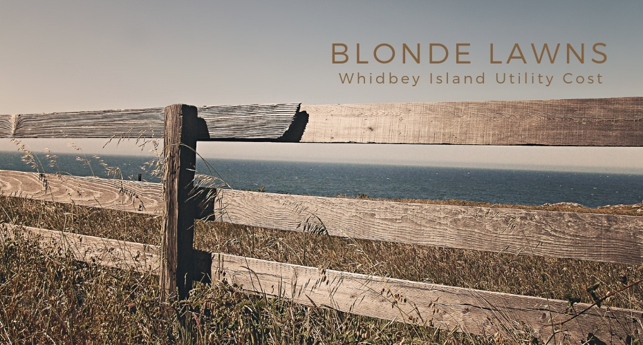 blonde lawns, yards, summer, resource, whidbey islan , oak harbor