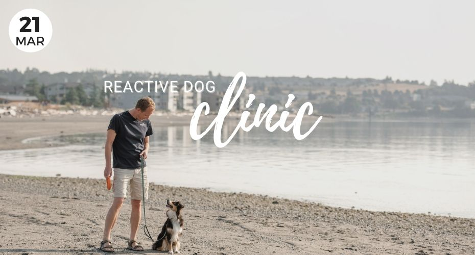 Reactive Dog Clinic, Mar 21, Event, Whidbey Island