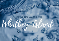 Drinking Water on Whidbey Island
