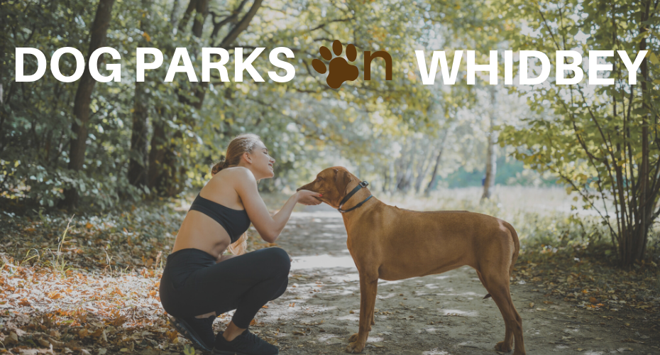 Dog Parks on Whidbey, Whidbey Island, Washington, Dogs, Parks